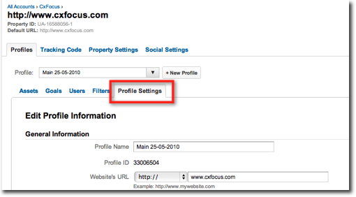Screenshot showing the profile settings interface in Google Analytics